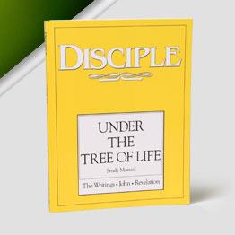 Disciple IV
